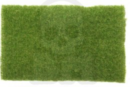 Short lawn early autumn co. 8x12 cm (1:87)