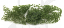 Groundcover evergreen bright 1 gram (1:87)