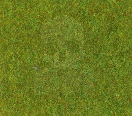 Light green grass mat 40x24 cm