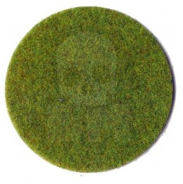 3 mm electrostatic grass, spring meadow 20 g